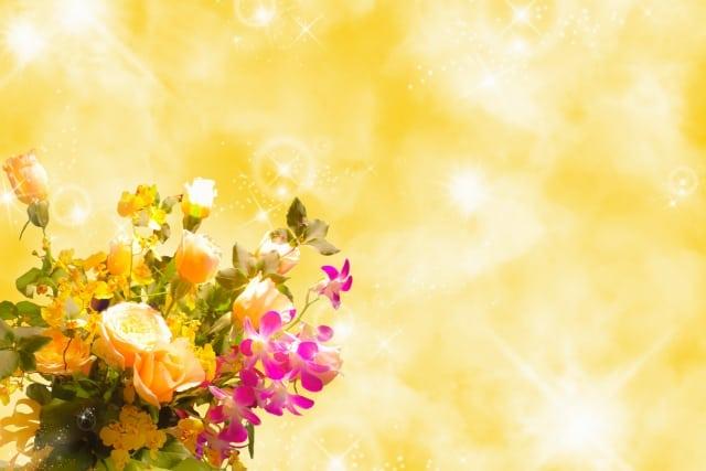 元気が出る30種の花言葉