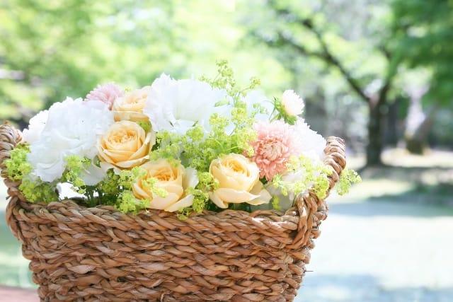 誕生日月の花言葉