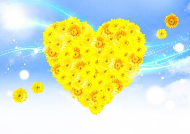 希望を与えるガーベラの花言葉