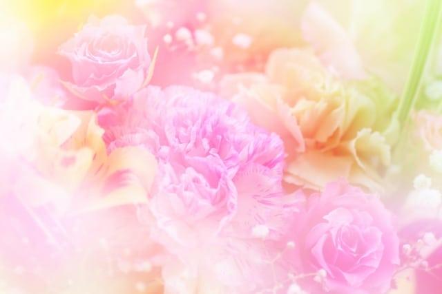 元気が出るパステルカラーカーネーションの花言葉